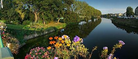 440px-Loire_Maine_Lion_tango7174