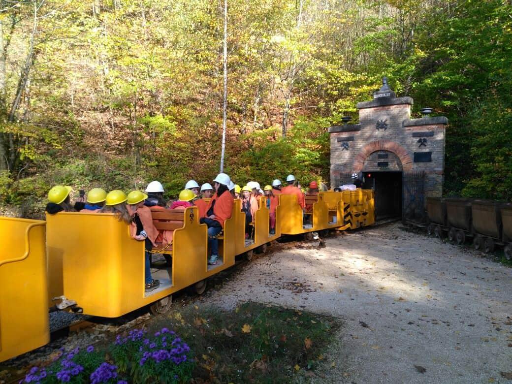Schullandheim Klasse 6: Bergwerk, Alpaka-Wanderung und Vieles mehr